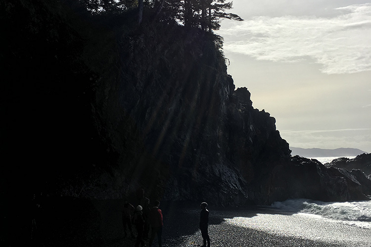 Group of people standing on rocky beach with sun streaming in through conifer trees