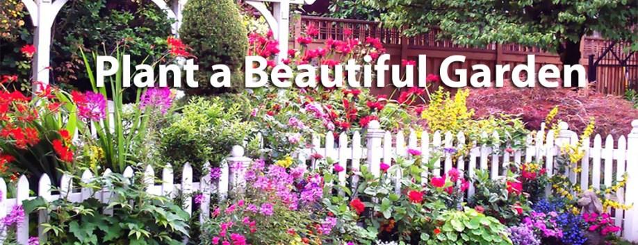 flowergarden5