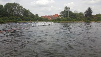 Triathlöwen