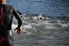 DSC 3741 - 22. Vierlanden-Triathlon – Regionalliga - Bilder
