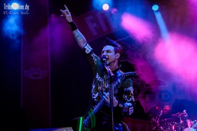 Five FInger Death Punch and Papa Roach_2015_33Adrian Sailer