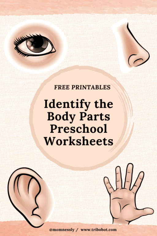 Identify the Body Parts Free Printable
