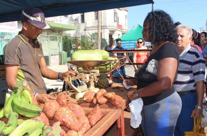 Persona comprando productos en mercado. La Habana-tornado-recuperación