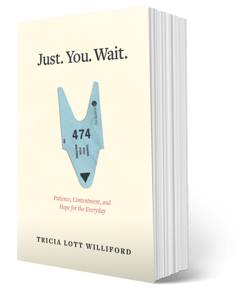 Just. You. Wait. book cover image