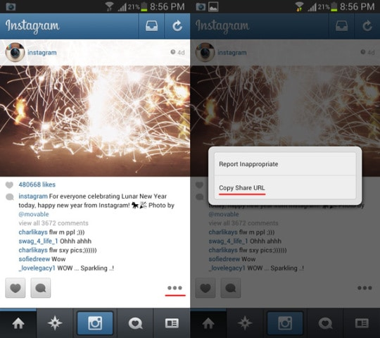 copy-instagram-photo-and-video-url