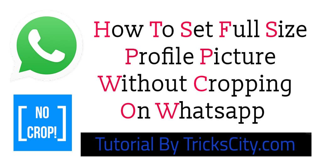 set-whatsapp-profile-picture-without-cropping