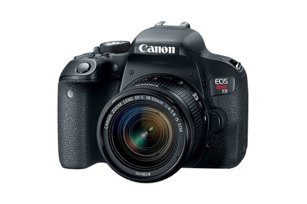 Best DSLR for Beginners