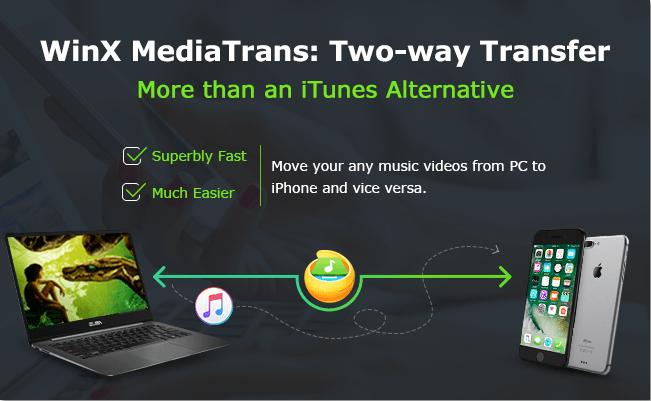 winx mediatrans download
