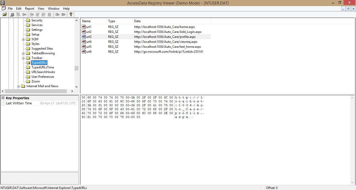 ntuser.dat TypedURLs registry key
