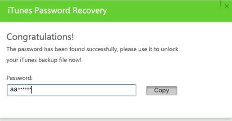 iTunes Password Recovery Password Found