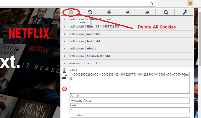 Netflix Premium Account Hourly Updates editmycookie Delete all