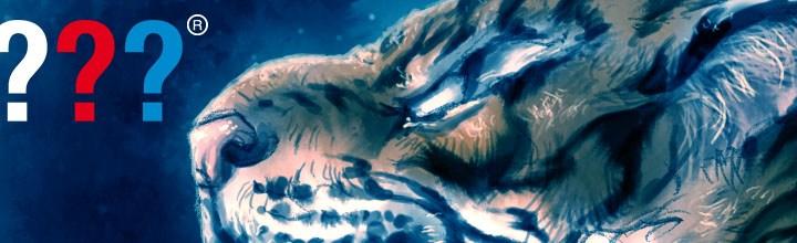 Cover: Die drei Fragezeichen – Nacht der Tiger