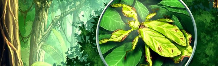 Noch mehr Biosphäre-Illustrationen