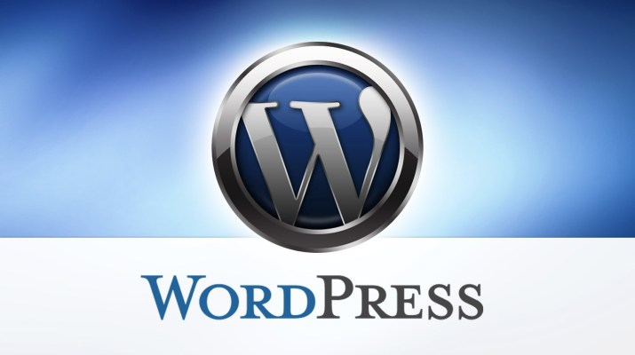 Professional WordPress Developer