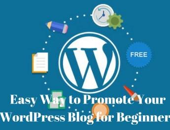 WordPress Blog for Beginners