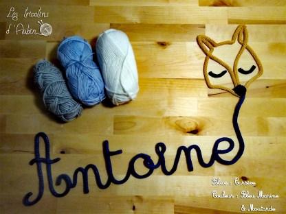 Antoine tricotin renard