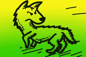 perros-y-humanos