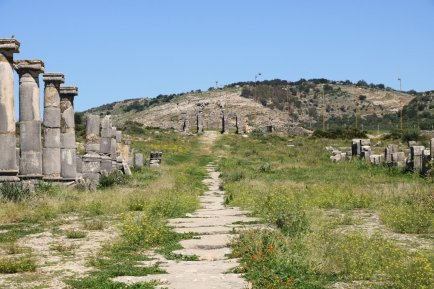 Marokko Highlights Volubilis Ruine Weg