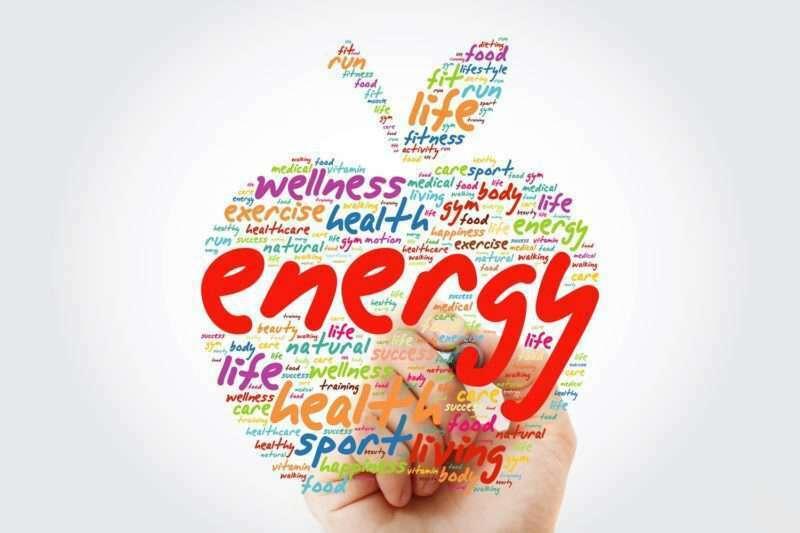 Trifocus Fitness Academy - energy systems