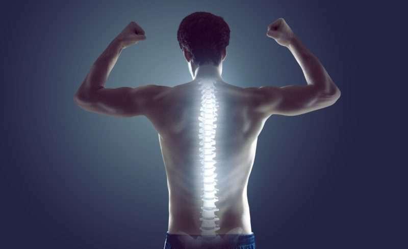 Trifocus fitness academy - spine stabilisation