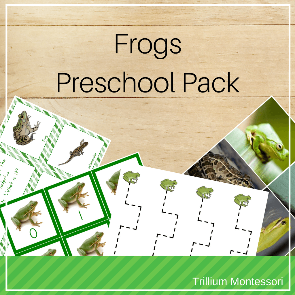 Montessori Resources For Learning About Frogs And