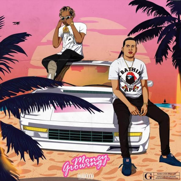 Dash Flash ft. Rich The Kid - Money Growing (Audio)