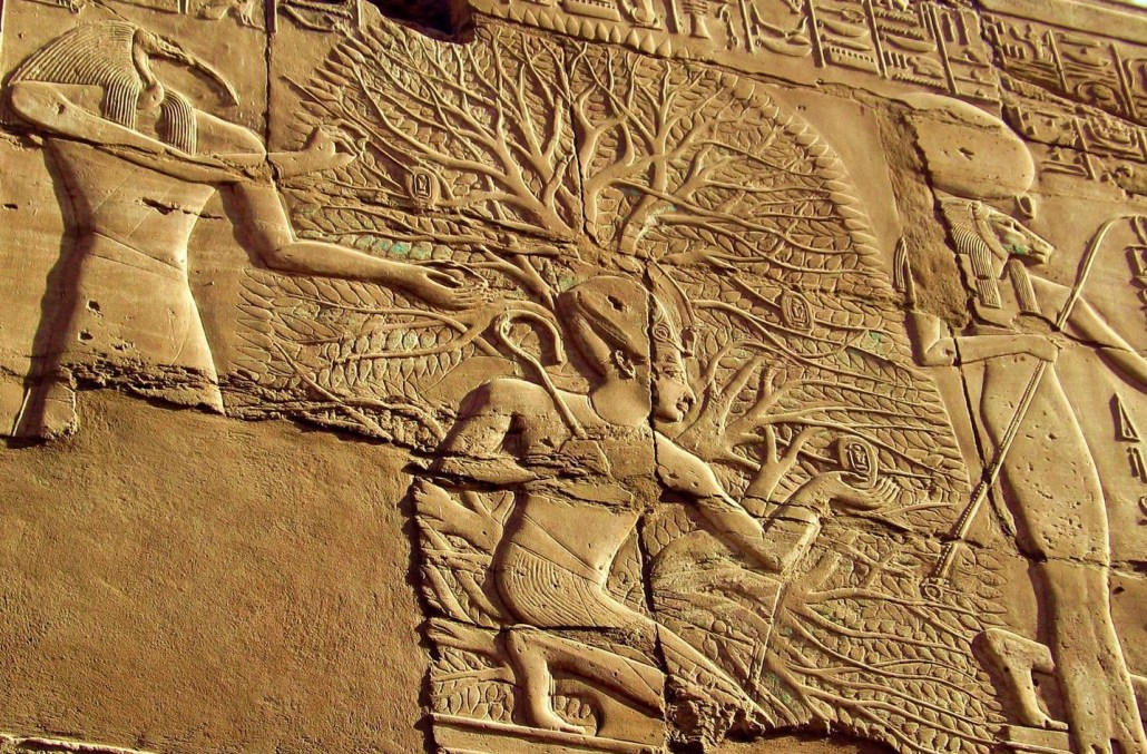 Sacred Mushroom Rites The Hidden Meaning Of The Egyptian Ankh