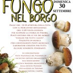 MUSHROOM FESTIVAL 30th SEPTEMBER 2018