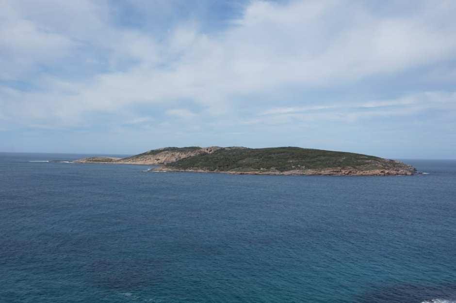 Observatory Point, on peut en saison y observer des baleines. Nous n'avons vu que des dauphins