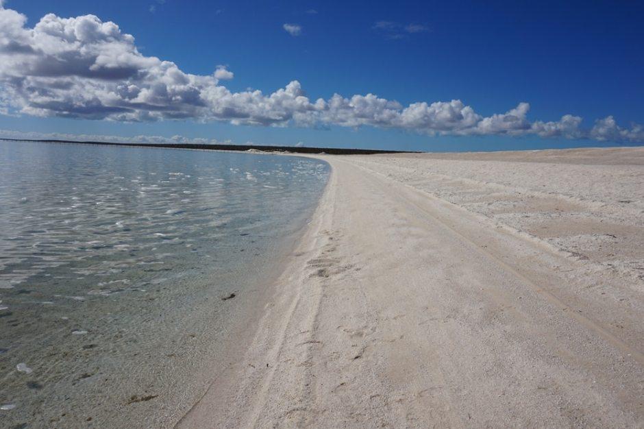 shell-beach-3