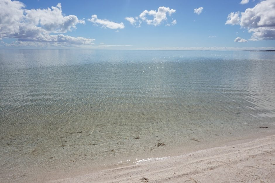 shell-beach-4