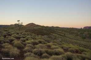 walanginjdji-lookout-sunset-4