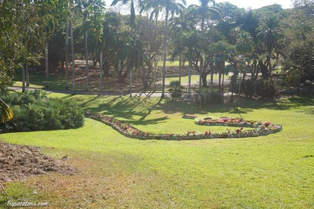 botanic-gardens-6