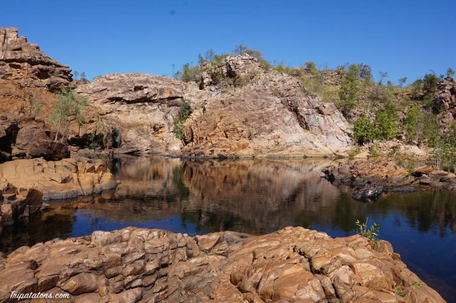 edith-falls-upper-pool-3