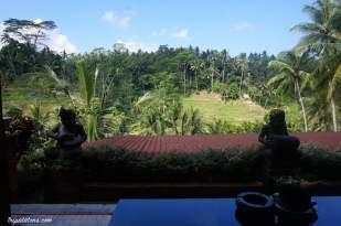 tegallalang-rice-terraces-resto-1