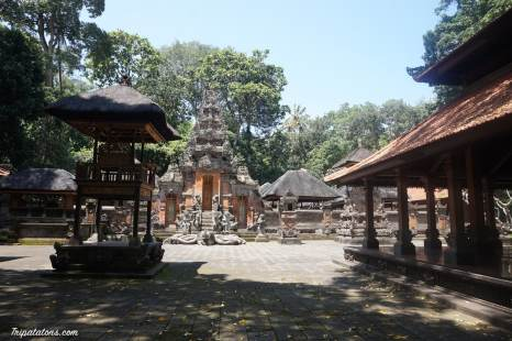 ubud-monkey-forest-5