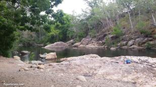 alligator-creek-2