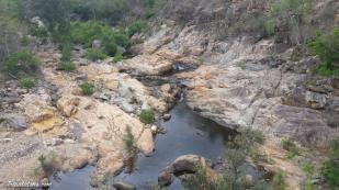 alligator-creek-3