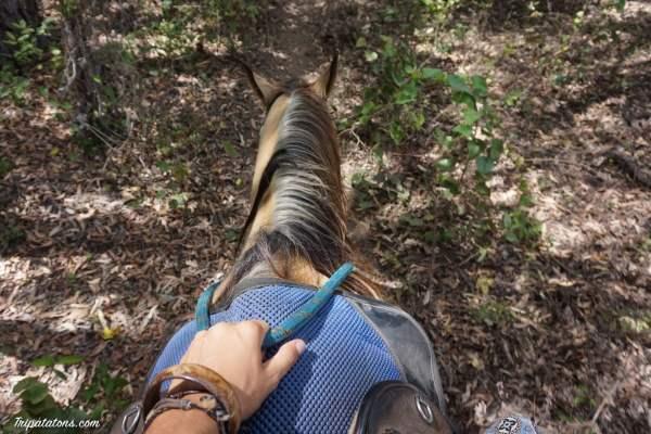 balade-cheval-1