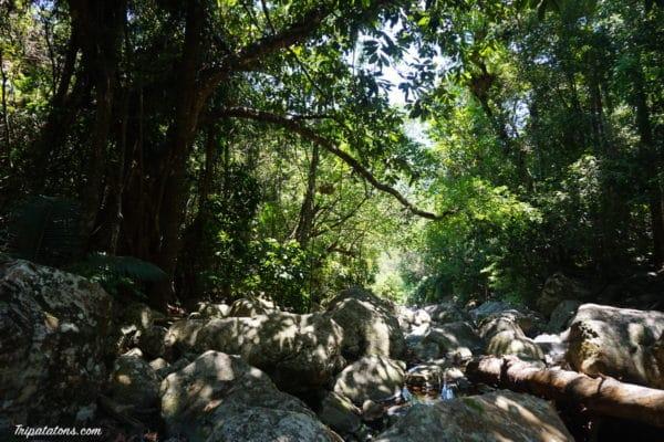 little-creek-1