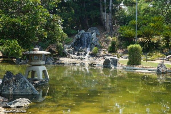 botanic-garden-rockhampton
