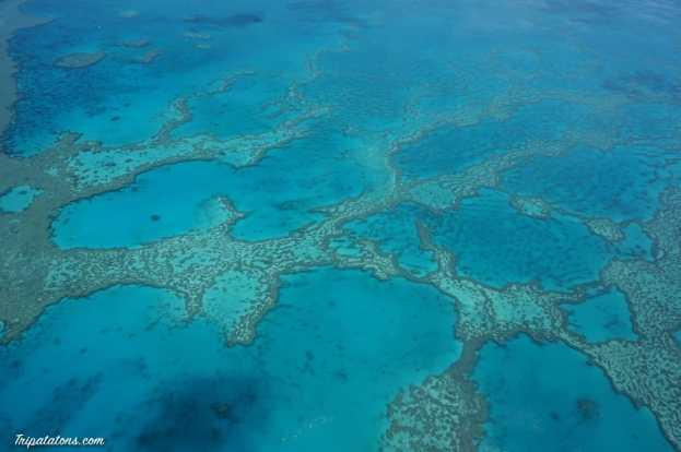 great-barrier-reef-4