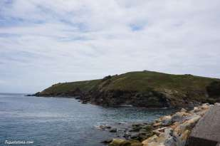 coffs harbour (5)