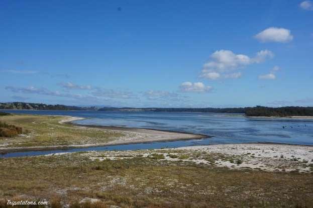 Coila beach