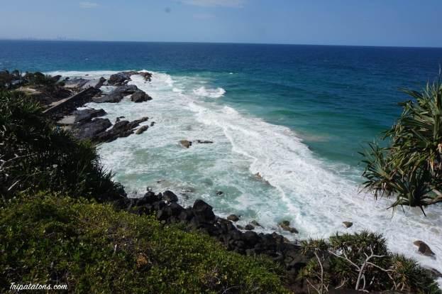 gold coast sud (1)