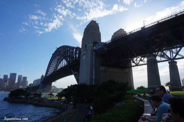 harbour bridge (3)