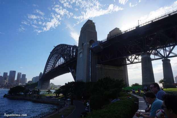 harbour bridge (3)