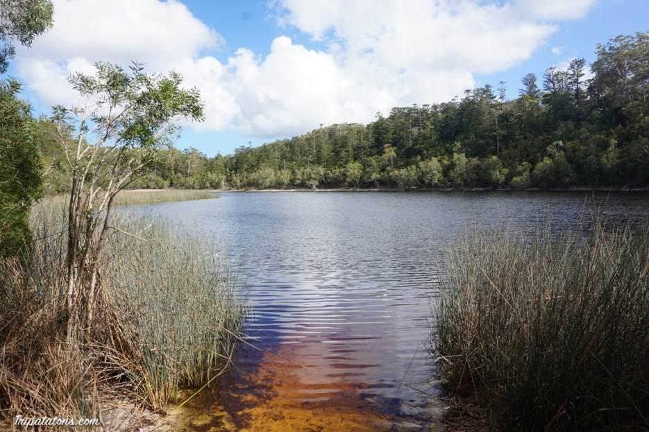 lake allom