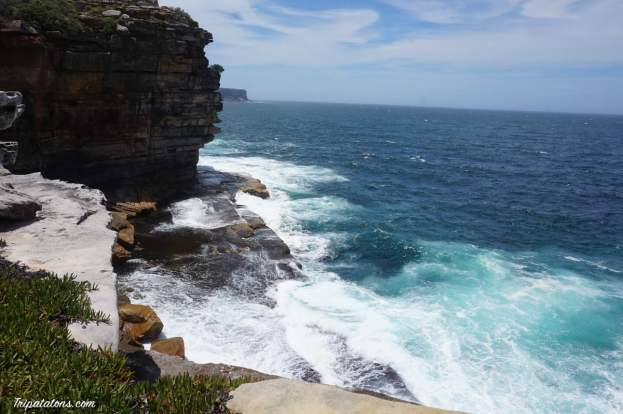 watsons bay-gap park (1)
