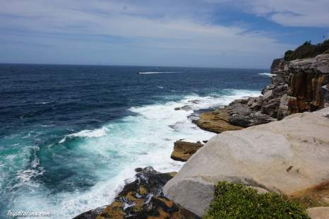 watsons bay-gap park (4)